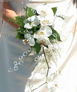 brudebuket med orkidéer