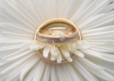 Vielsesringe i guld med rustik overflade som ligger på en blomst