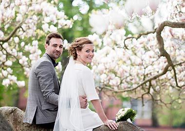Brudepar der sidder på en stor gren med kirsebærtræer i baggrunden