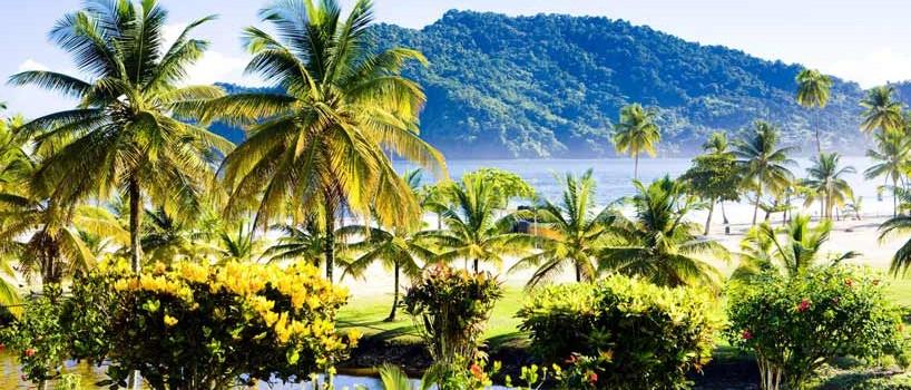 Bryllupsrejse på Trinidad & Tobago