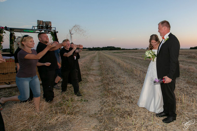 bryllupsgæster-smider-fuglefrø