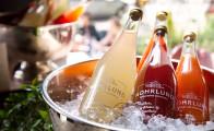 Økologiske cocktails fra Nohrlund