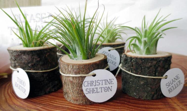 små træstykker med grøn plante som bordkort